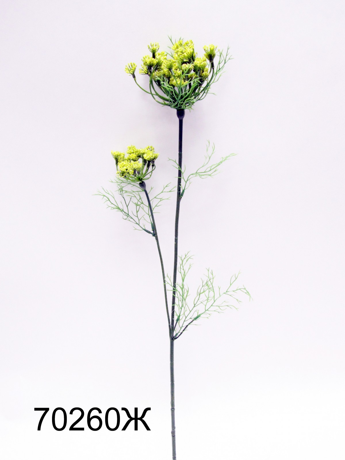 Цветы срезка каталог и